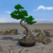 Bonsai 3D Live Wallpaper Mod App Download for PC / Android