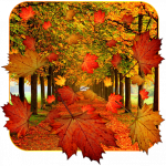 Autumn Leaf Fall Live Wallpaper Mod Apk Paid for free
