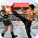 Kung fu fight karate offline games Fighting games Mod Apk Latest Version shadow fight